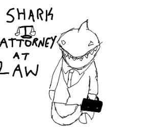 Shark going to court