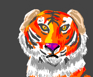tiger with human ears