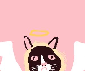 Angelic Grumpy Cat