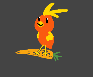 Torchic streps on a carrot