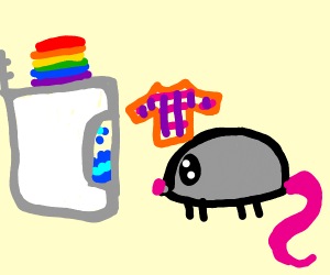 Mouse doing Laundry