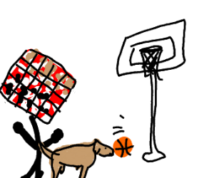 Chessboard plays basketball with a dog