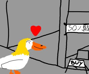 duckgirl loves sale