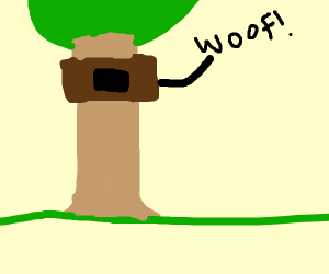 dog in a treehouse