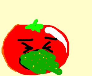 Tomato pukes
