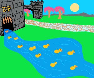 Release ducks