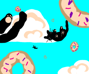 cats and donuts falling from the sky