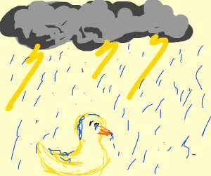Duck in a Thunderstorm