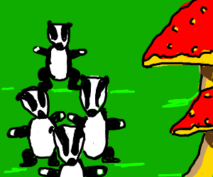 four badgers and two mushrooms