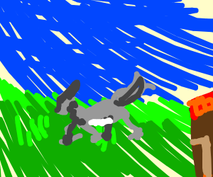 Wolf crossing the Lawn