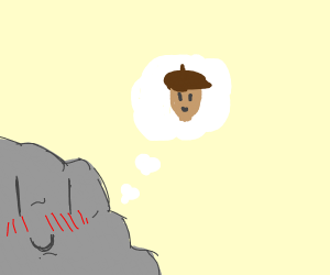 Rock thinks about an acorn
