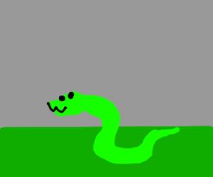 happy snake in grass