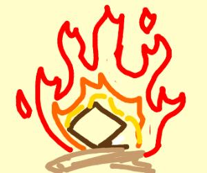 Notebook in a Fire