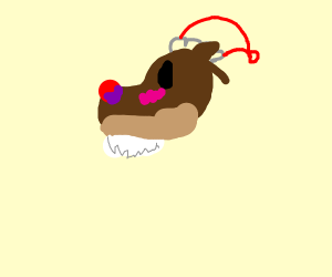 santa ferret