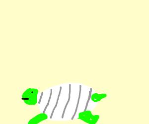 A Turtle Wearing a Turtleneck