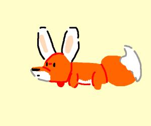 Awkward fox in bunny ears