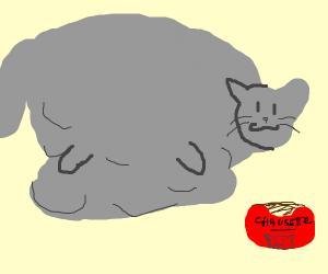 Very Fat Cat