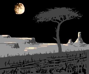 the savannah at night