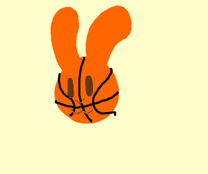 astonishing basketball rabbit