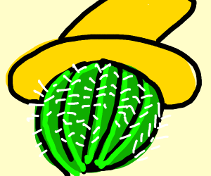 Cactus with yellow hat