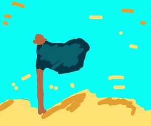 Blue Flag in desert wasteland