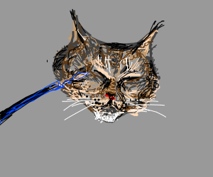 painting a cat