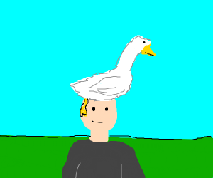 duck has become hair