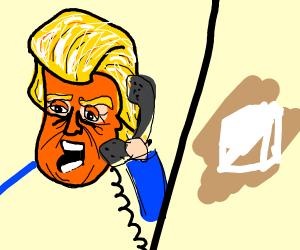 Trump calling a sugar cube