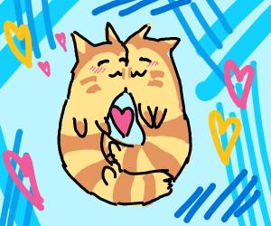 Furrets in love