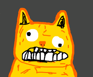Ugly yellow cat