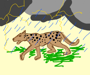 Leopard in a Thunderstorm