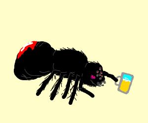 Drunk spider