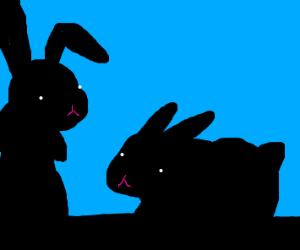 Two bunny shadows