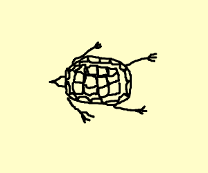 skeletal turtle