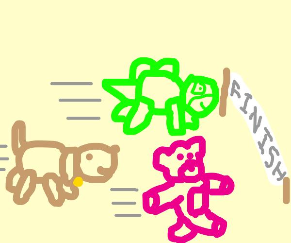It's an adorable stuffed toy race! Go!