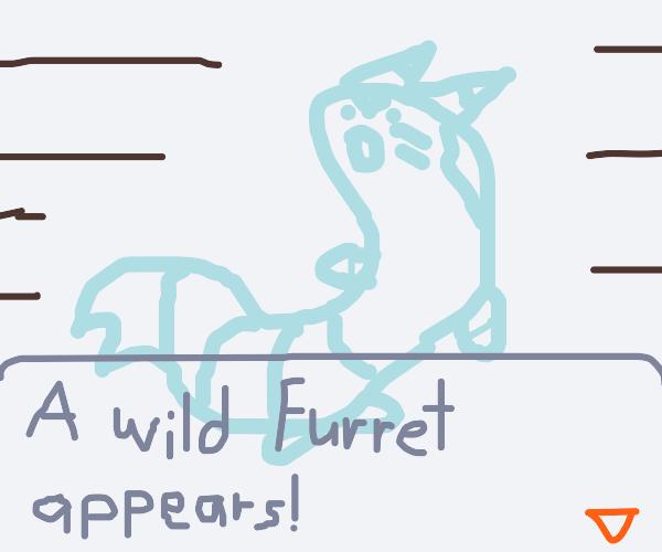 A wild Furret appeared!