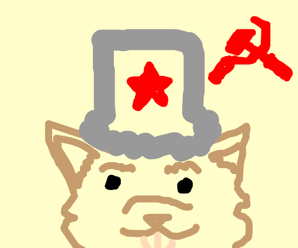 doge likes communism