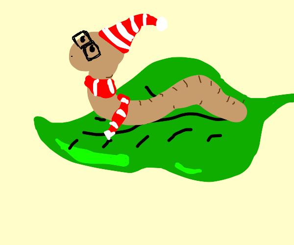 Little worm boy on a leaf