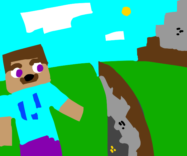 minecraft steve pointing at a ravine