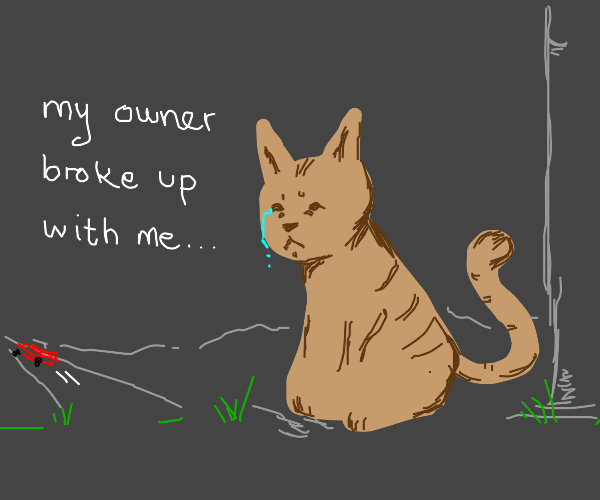 A cat states that her owner broke up