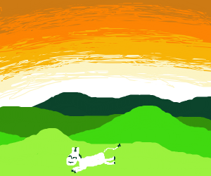 white horse galloping under the sunset