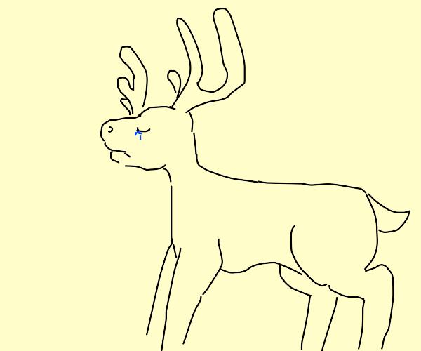 sad moose