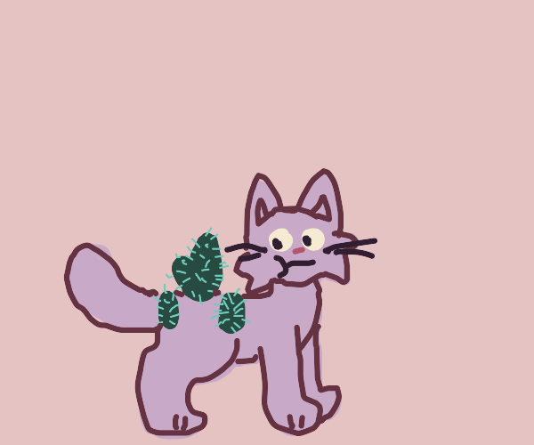 cat with cactus growing on it