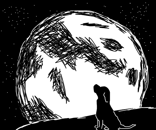 monochrome dog looks at moon