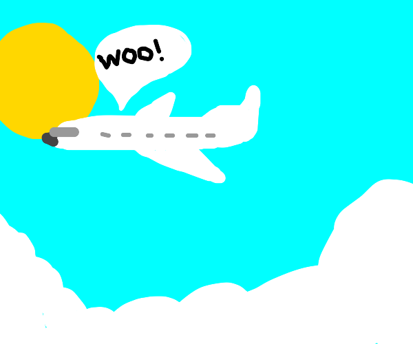 Enjoying Flying on Airplane