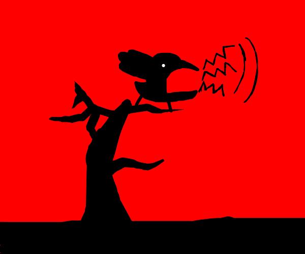 A noisy crow