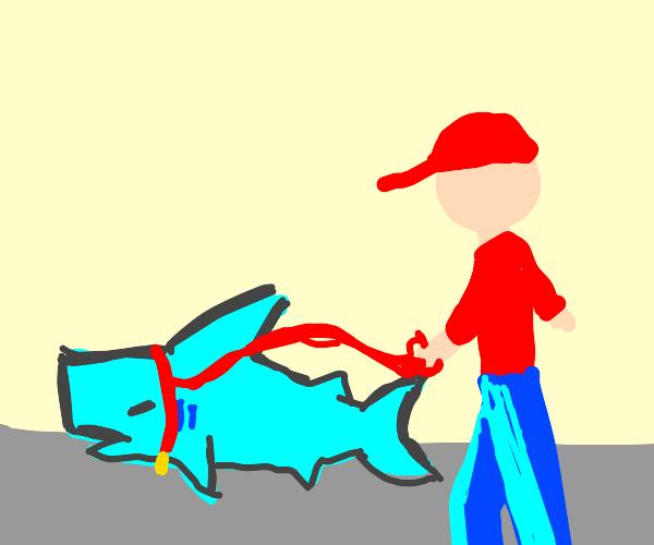 man walks his pet shark