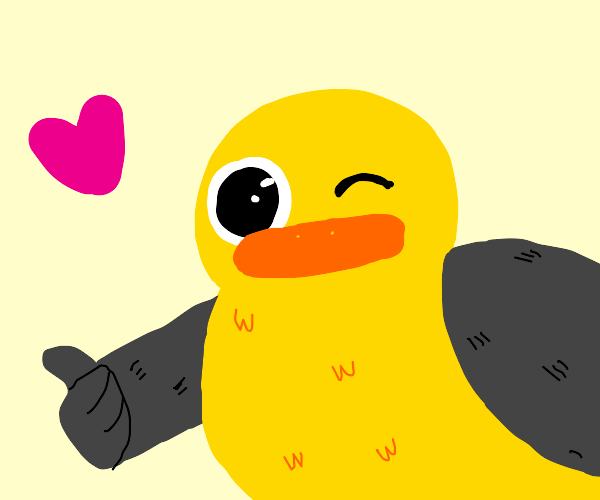 Adorable duck with black wings winks