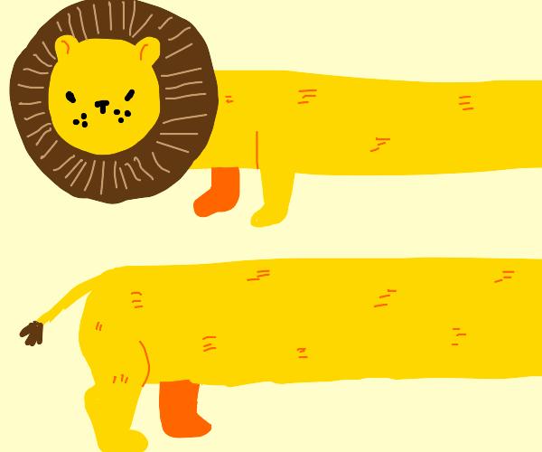 You've Heard Of Longcat, Now Meet Long Lion