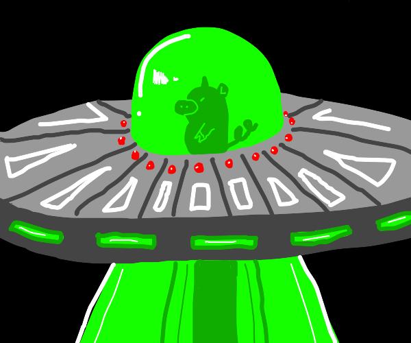 Piglet in flying saucer